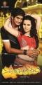 Sai Krishna, Sheena Shahabadi in Nuvve Naa Bangaram Movie Posters