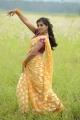 Actress Nisha Shah in Oke Oka Chance Movie Stills