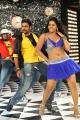 Nara Rohit, Rachana Maurya in Okkadine Movie New Stills