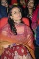 Namrata Shirodkar @ One Nenokkadine Audio Release Photos