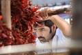 Telugu Hero Ram in Ongole Gitta Movie New Stills