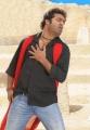Oosaravelli Movie Latest Stills