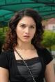 Oosaravelli Actress Tamanna Black Dress Cute Pics