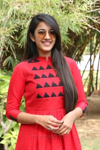 Actress Niharika Konidela @ Oru Nalla Naal Paathu Solren Movie Press Meet Photos