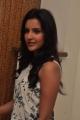 Actress Priya Anand @ Oru Oorla Rendu Raja Press Meet Photos