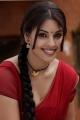 Actress Richa Gangopadhyay Red Saree Hot Photos