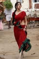 Osthi Richa Gangopadhyay Hot Red Saree Photos