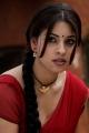 Osthi Richa Gangopadhyay Red Saree Hot Photos