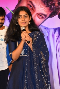 Actress Megha Lekha @ Paagal Movie Success Meet Stills