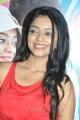 Actress Janani Iyer at Paagan Movie Audio Launch Stills