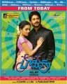 Janani Iyer, Srikanth in Paagan Movie Release Posters