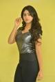Actress Pallak Lalwani Images @ Crazy Crazy Feeling Press Meet