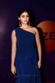 Actress Palak Lalwani @ Zee Telugu Apsara Awards 2018 Red Carpet
