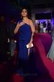 Actress Palak Lalwani Images @ Zee Apsara Awards 2018