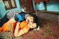 Palakkattu Madhavan Movie Stills