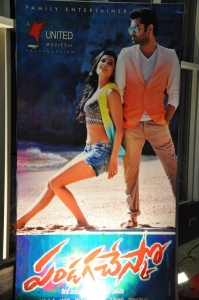 Pandaga Chesko Movie Audio Launch Stills
