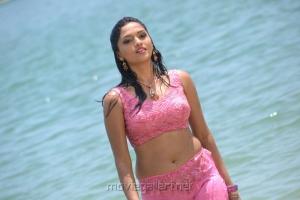 Actress Sunaina in Pandi Oli Perukki Nilayam Hot Stills