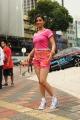 Actress Sunaina in Pandi Oli Perukki Nilayam Tamil Movie Stills