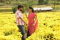 Sabareesh, Sunaina in Pandi Oli Perukki Nilayam Movie Stills