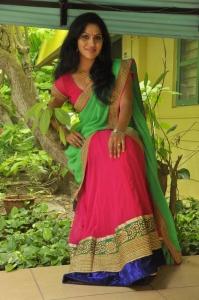 Actress Swasika @ Panduvam Movie Team Interview Stills