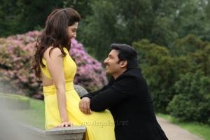 Mehreen Pirzada, Gopichand in Pantham Movie Stills HD