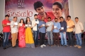 Parichayam Movie Audio Launch Stills