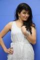 Telugu Actress Parinidhi Latest Photos