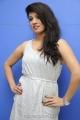 Telugu Heroine Parnidhi Photos