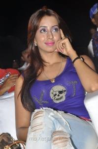 Sanjana at Park Movie Audio Release Function Stills