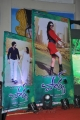 Park Movie Audio Release Function Stills