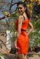Parvathi Melton New Hot Stills
