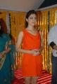 Parvathi Melton at Balakrishna New Movie Launch