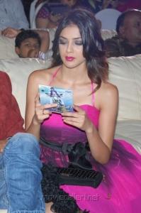 Parvathi Melton Hot Images at Srimannarayana Platinum Disc Function