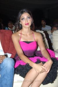 Actress Parvathi Melton Latest Hot Images