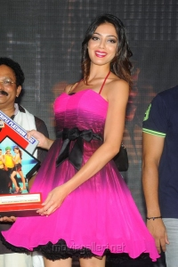 Actress Parvathi Melton at Srimannarayana Triple Platinum Disc Function