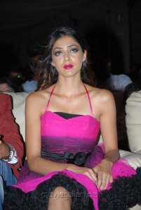 Actress Parvathi Melton Hot Images in Pink Gown