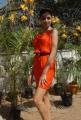 Parvathi Melton Latest Photoshoot Stills