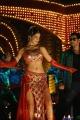 Parvathi Melton Latest Hot Pictures