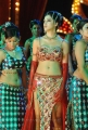Parvathi Melton Hot Pics in Dookudu