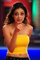 Actress Parvathi Melton in Yellow Dress Hot Pics
