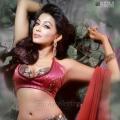 Tamil Actress Parvathy Nair Hot Photo Shoot Gallery