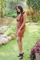 Pavani Reddy Hot Photo Shoot Stills