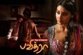 Hot Shriya Saran in Pavitra Tamil Movie Wallpapers