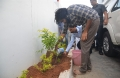Jana Sena Party chief Pawan Kalyan participates Haritha Haram Photos