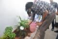 Actor Pawan Kalyan participates HarithaHaram Photos
