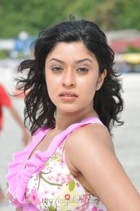 Payal Ghosh Hot Bikini Stills
