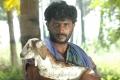 Tamil Actor Kavin in Payapulla Movie Stills