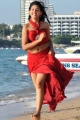 Actress Niti Taylor in Pelli Pustakam Latest Stills