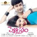Rahul, Niti Taylor in Pelli Pusthakam Movie Launch Wallpapers