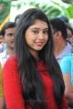 Telugu Actress Niti Taylor at Pelli Pustakam Movie Opening Stills